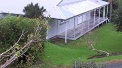 High Wind Storm Damage NZL 01 Stock Footage