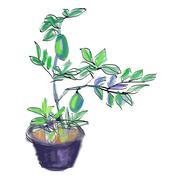 Sketch vector of lemon tree Stock Illustration
