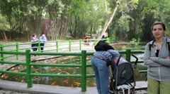 Tourists watching coy fish at the giant panda breeding research center in che Stock Footage