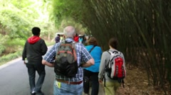 Tourists walking at the giant panda breeding research center in chengdu Stock Footage