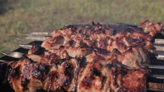 Barbecue kebab Stock Footage