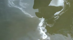 Military Trainees Enter Swamp Stock Footage