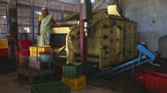 Local women working on a machine in the tea factory in Nuwara Eliya. Stock Footage