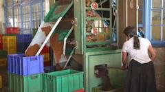 Local woman working on a machine in the tea factory in Nuwara Eliya. Stock Footage