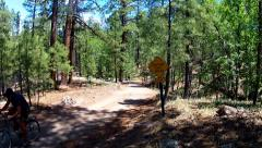 Stock Video Footage of Man Climbs Steep Hill On Mountain Bike In Forest- Flagstaff AZ
