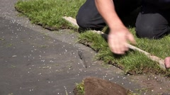 Turf Laying - Cutting Stock Footage