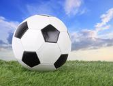 Stitch leather soccer ball on green field blur sky. Stock Photos
