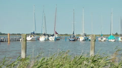 Wustrow, Harbour for sailing boats, Germany Stock Footage