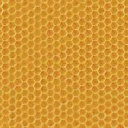 realistic seamless texture of honeycomb - stock illustration