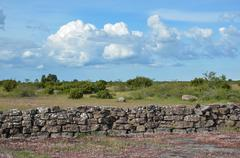 Summer view at a stonewall in a plain landscape Stock Photos