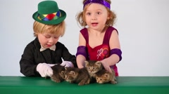 Little boy and girl in costumes magicians with four kittens Stock Footage