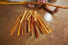 Cinnamon manufacture in Sri Lanka - stock photo