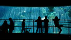 Aquarium Silhouettes 02 Family Crowds - stock footage