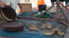 Marrakesh - Pythons in Jemaa el-Fnaa Stock Footage