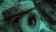 Truck tires in a pile on ocean floor, beginnings on an artificial reef Stock Footage