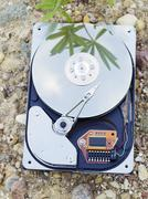 Hdd on ground Stock Photos