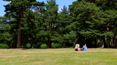 Father and child in the park Stock Footage