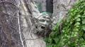 4k gargoyle crying man with climber plant 4k or 4k+ Resolution