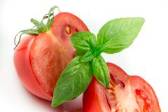 tomato and basil leaf isolated - stock photo