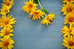 Bunch of yellow daisy flowers Stock Photos