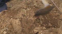 Close up view of a man digging and working on a land Stock Footage