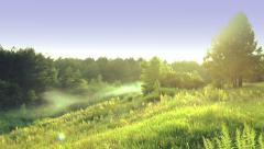 Panorama of green field and forest ravine Stock Footage