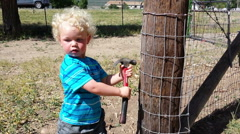 Curly haired 2 year old hammering on fence-S4-HD P-103606 Stock Footage