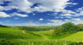 Summer nature landscape, green hills of Tuscany, Italy, time-lapse. Footage