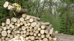 The heaps of logs transferred using a crane  fs700 odyssey 7q Stock Footage