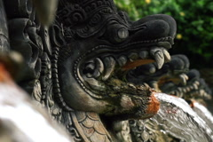Water flowing from dragon sculpture in hot springs Bali NTSC Stock Footage