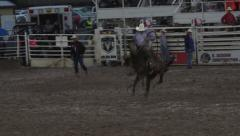 Rodeo bareback bronco cowboy rough ride 4K 267 Stock Footage