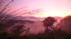 Timelapse of foggy sunrise on the Little Adam's Peak in Ella, Sri Lanka - stock footage