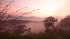 View of foggy sunrise on the Little Adam's Peak in Ella, Sri Lanka - stock footage