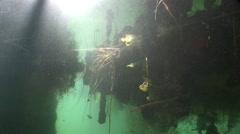Underwater light shines beautiful algae Stock Footage