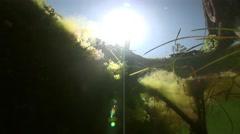 Sea pier underwater.The sun penetrates and illuminates the bottom Stock Footage
