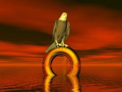 bald eagle - stock illustration