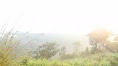 View of foggy sunrise on the Little Adam's Peak in Ella, Sri Lanka Stock Footage