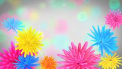 Flowers opening- colorful video background. Stock Footage
