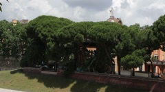 Island of Tiber with Trees - stock footage