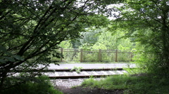 Ride on a rail-cycle draisine along the old railway in Maredsous. Stock Footage