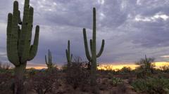 4K Time Lapse Storm Cloud Sunset Over Arizona Saguaro Cactus Desert Landscape Stock Footage