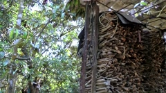 Vietnam Phú Mỹ district villages 008 shed with firewood Stock Footage