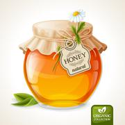 Honey jar glass - stock illustration