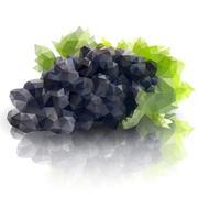 Sprig of grapes, triangle design vector illustration Stock Illustration