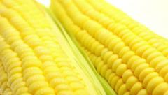 Fresh sweet corn background dolly shot Stock Footage