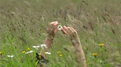 Woman hands playing with a daisy flower laid down in the grass Stock Footage