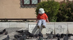 Little child sitting and looking to the pigeons 4K Stock Footage