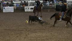Rodeo muddy steer wrestling HD Stock Footage