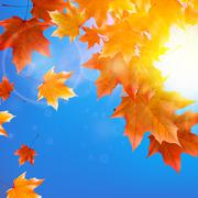 Stock Illustration of Delicate autumn sun with glare on blue sky.