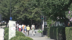 Moving people on zebra crossing, summer day out, proper dressed, green park view Stock Footage